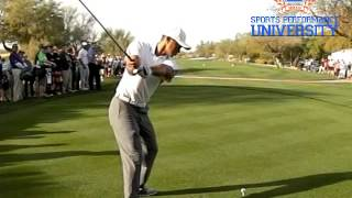 Tiger Woods Driver Golf Swing 2015 Dl