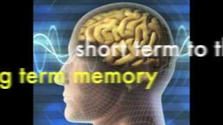 how to spell:  tip 3 spelling memory