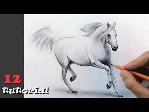Как нарисовать лошадь видео