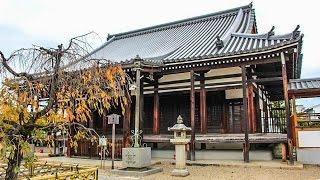 南真経寺 京都 / Minamishinkyo-ji Temple Kyoto