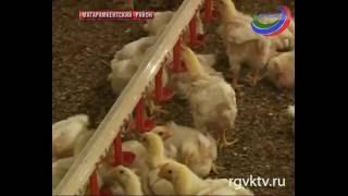 В Магарамкентском  районе  реализуется  инвестиционный  проект