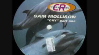 Sam Mollison - Cry (fade dub mix)