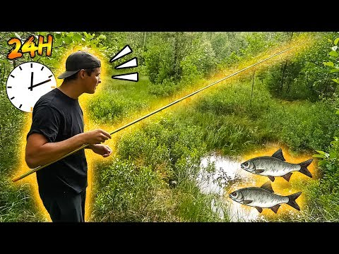 HOW MANY SPECIES CAN WE CATCH IN 24 HOURS? - Next Level | Team Galant