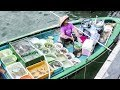 Live Fish Market on Boats. Sai Kung, Hong Kong