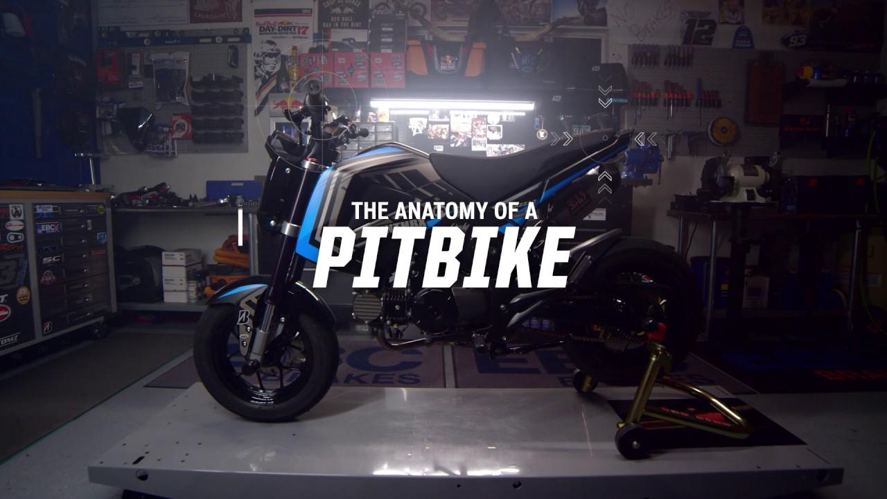 The Anatomy of a Pit bike // Saddlemen - YouTube