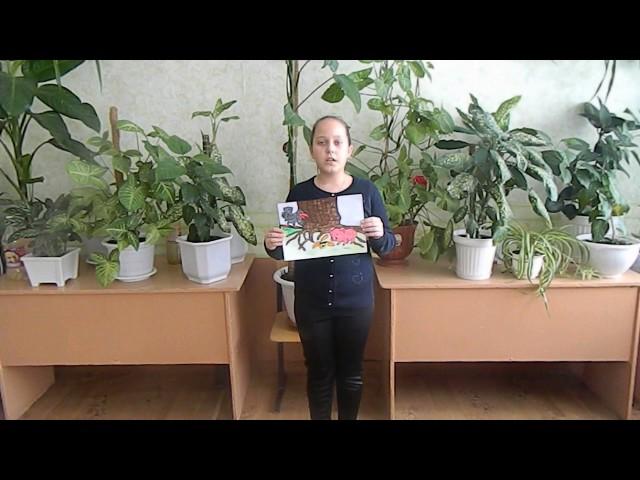 Изображение предпросмотра прочтения – ВикторияЩедрина читает произведение «Свинья под дубом» И.А.Крылова