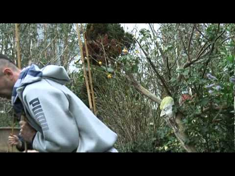 how to build a sweat lodge in your garden - YouTube