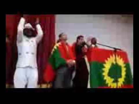 OROMSIISTube-Qabsoo Bilisummaa Oromoo deeggarte