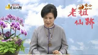 北投教室 元捨講師【老祖仙跡153】  WXTV唯心電視