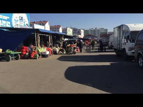 travel mongolia black market