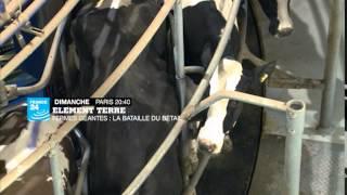 Elément Terre - fermes géantes: la bataille du bétail