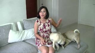 Video 3 Minutes Uncut -  Andrea Dian (Bercerita tentang hewan peliharaanya) download MP3, 3GP, MP4, WEBM, AVI, FLV Juni 2018