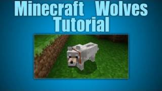 Minecraft Wolves! How to Tame, Find, and...