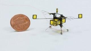 Amerika'da Suyun İçinde Yüzebilen Uçan Mikro Robot Üretildi
