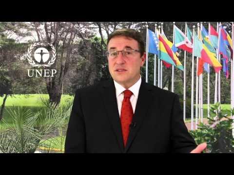 UNEP Executive Director Achim Steiner's address at IIS Global Insurance Forum 17 June 2015, UN HQ