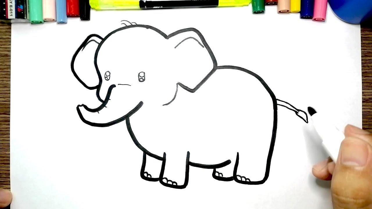 Elefant Zeichnen Und Malen Fur Kinder Farben Lernen Auf