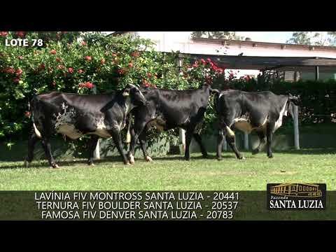 SANTA LUZIA   LOTE 78