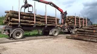 Holzanlieferung mit eigenen LKW