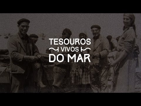Documental Tesouros Vivos do Mar de A Guarda