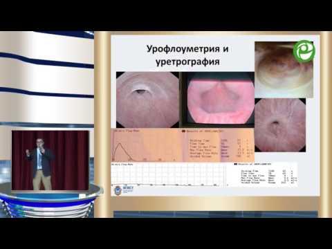 Живов А В - Принятие решений в хирургии стриктур уретры, что важно знать всем