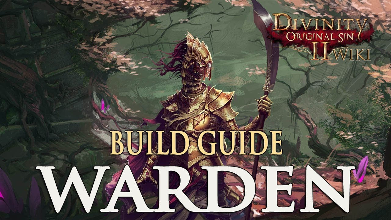Divinity Original Sin 2 Party Combinations Guide: Magic, Physical