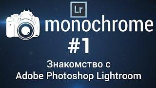 Интерфейс и быстрое редактирование в Adobe Photoshop Lightroom: monochrome #1