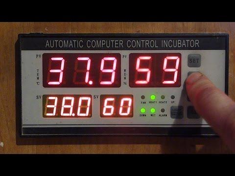 Контроллер для инкубатора!!! Подробно! Инструкция и схема подключения!