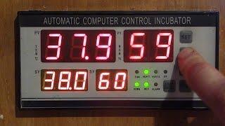 Контролер для інкубатора!!! Докладно! Інструкція і схема підключення!