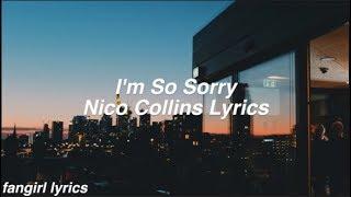 I'm So Sorry || Nico Collins Lyrics