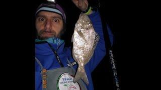 Corsica Surf Casting Novembre 2014 - Team Cucala Ottoppac