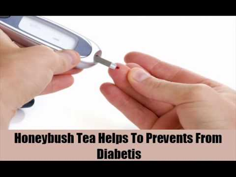 8 Health Benefits Of Honeybush Tea
