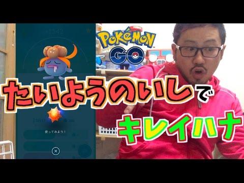 how to use a sun stone pokemon go