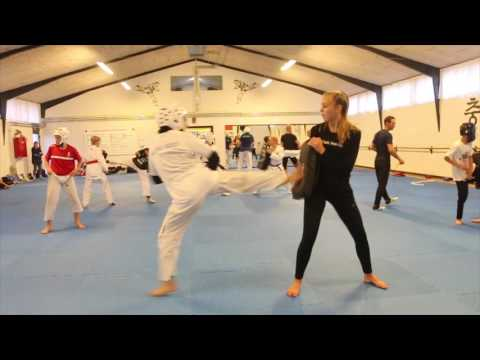 Todays Taekwondo in Denmark Risskov - 2016