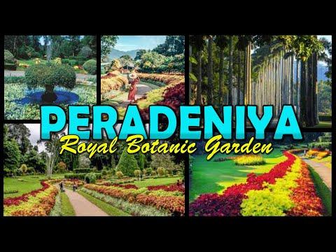 PERADENIYA - Royal Botanic Gardens - Sri Lanka (4K)
