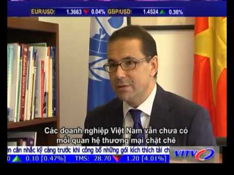 UNIDO representative in Vietnam speaks about economic development in interview with VITV