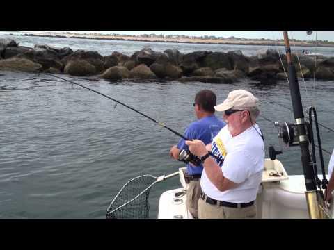Fishing with School