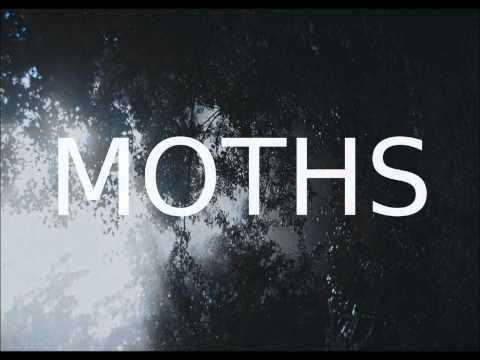 moths-heart