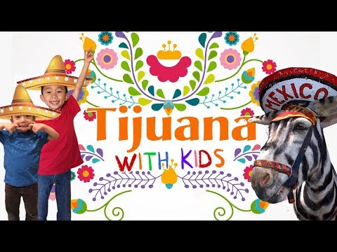 Is Tijuana Safe? (Top Things to do in Tijuana): Gringos in Mexico Travel Vlog