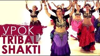 Восточные танцы по-новому. Урок Tribal Shakti