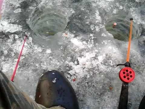 ловля карася на поплавок зимой
