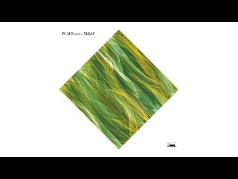 Wild Beasts - Stray (Official Audio)