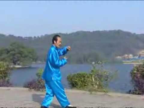 Wudang Tai Chi 13 stance of Tai Chi-Võ Đang Thái cực quyền Thập tam thức