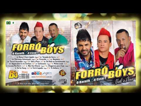 Forró Boys Vol. 5 - 16 Forró Lapada