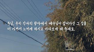 [온 세상을 위한 기도] 우리의 광야에서 예수님의 길을 느끼도록   서성경