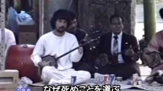 http://twitter.com/simaguwa http://www.miraisha.co.jp/okinawa-kina-...