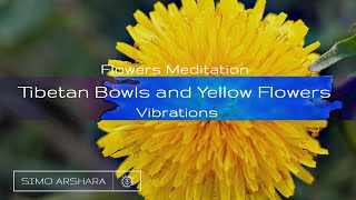 Flowers Meditation with Tibetan Bowls and Yellow Flowers Vibrations