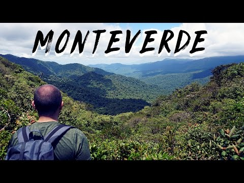 Into the Sky at Monteverde Cloud Forest | Costa Rica Day 4