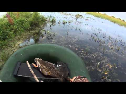 осенняя охота на уток с лодки