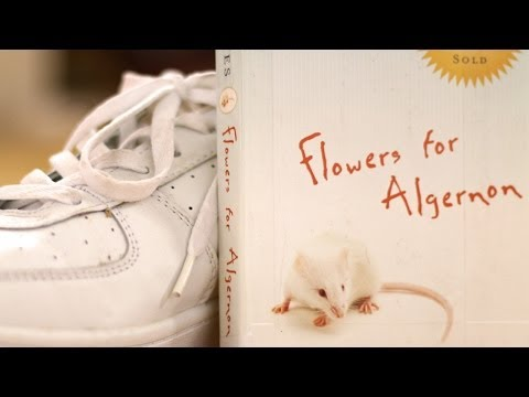 Flowers for Algernon by Daniel Keyes (Book Summary and Review) - Minute Book Report