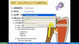 2- Articulación escápulo humeral.avi